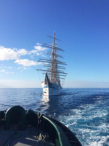 approaching Nippon Maru