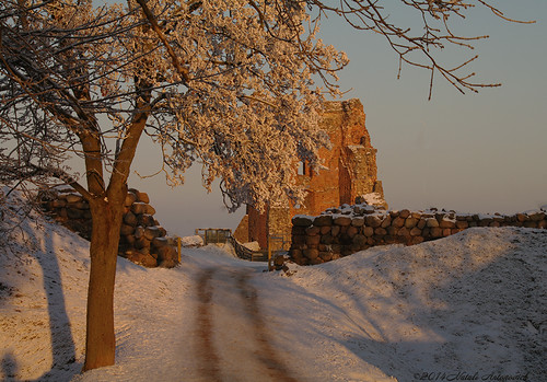 park christmas old winter snow tree castle nature architecture landscape frost great belarus oldest noble oldworld oldtime oldentimes christmasholidays novogrudok navahrudak motherlandbelarus ruinsofnavahrudakcastle