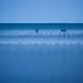 L'heure bleue by lilian.lemonnier