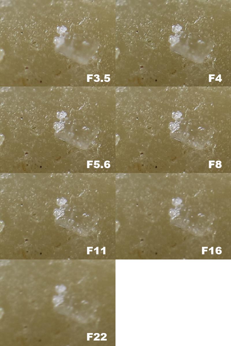 Canon EF 28mm Macro_F_Stops_Crops