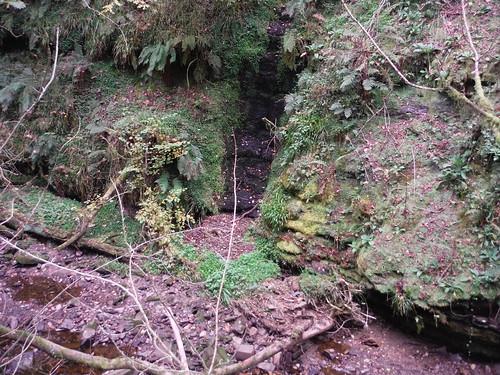 Landslip on opposite side of Nant Llech