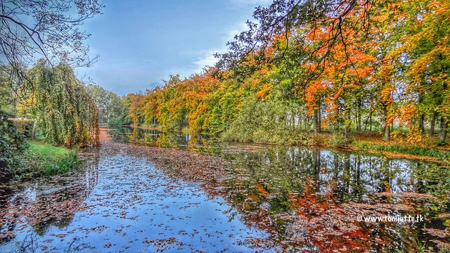 Autumn Colours, Landgoed Voorstonden, Brummen, Netherlands - 1032
