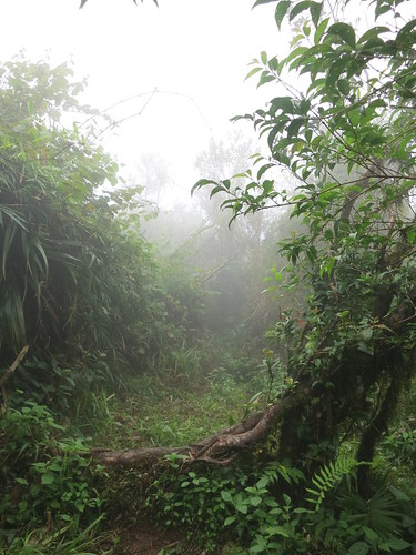 Pantingan Peak