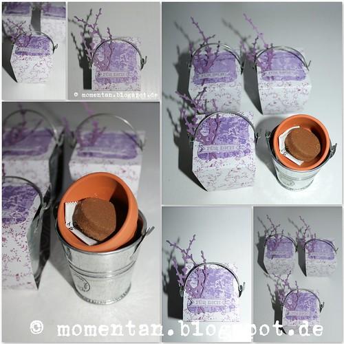 20150127 Lavendel-Mini-Töpfchen mit Verpackung