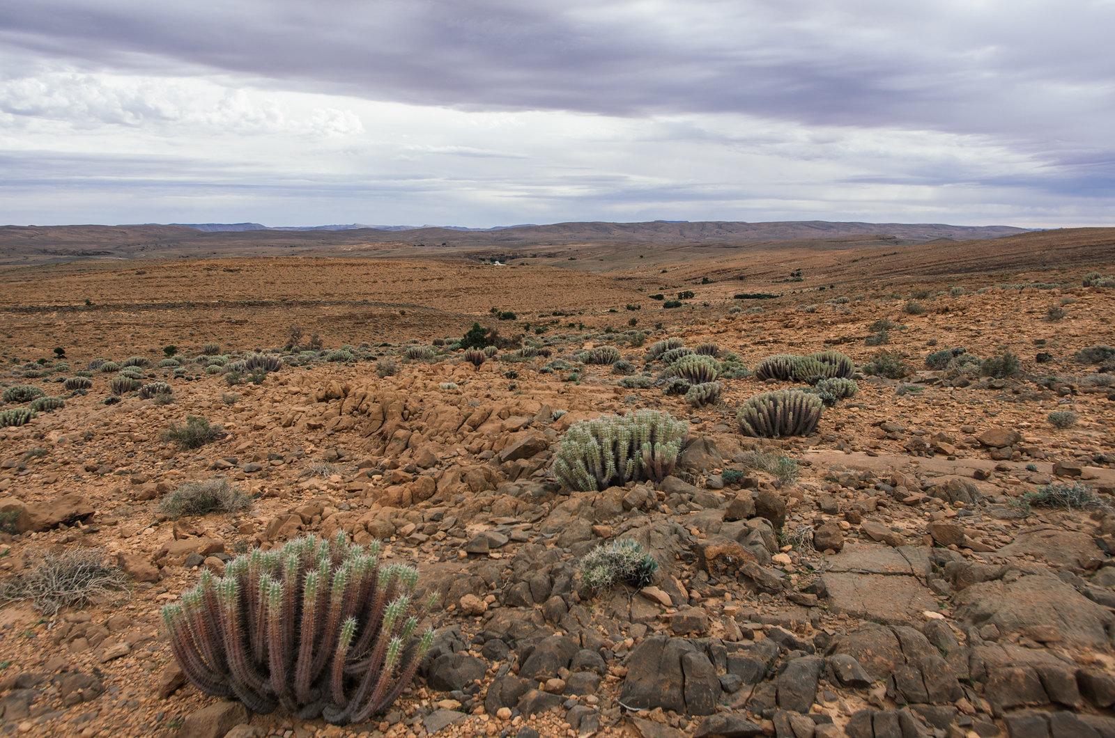 Trek sans guide au Maroc - 5 jours dans l'anti-Atlas - Au sommet