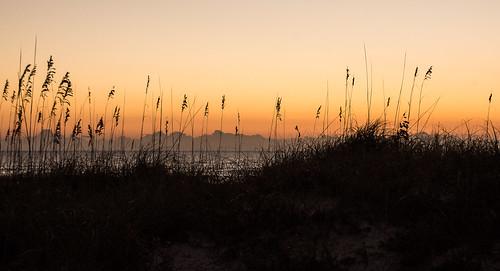 2014 florida sunny sunrise everything