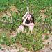 Synchrodogs need help! by tania.shcheglova