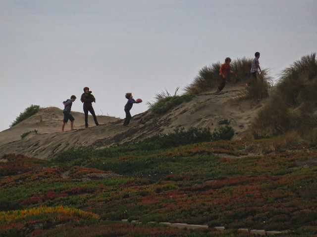 kids playing on dunes at Great Highway; Ocean Beach, San Francisco (2014)