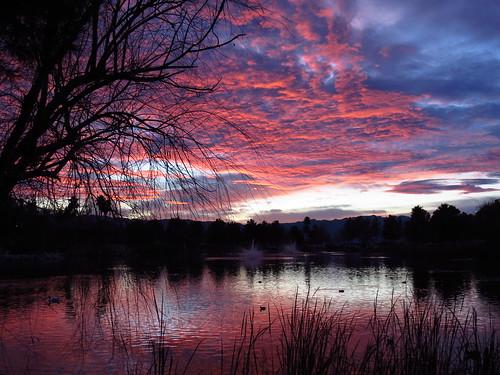 sunset 365