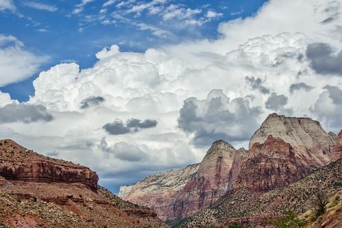 trees sky plants mountains rocks pflanzen himmel canyon berge bäume tal felsen