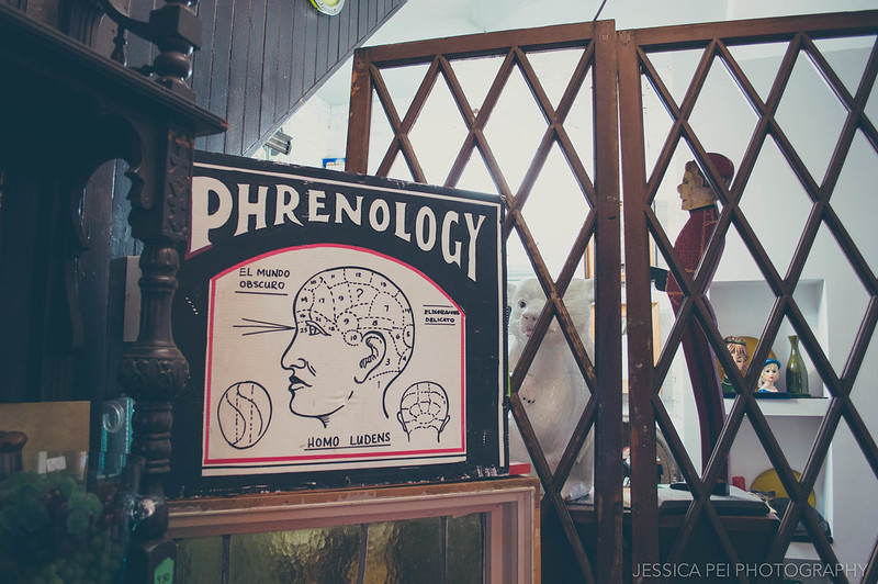 Phrenology Sign The Purple Cow Antique Store St. Louis Cherokee Street