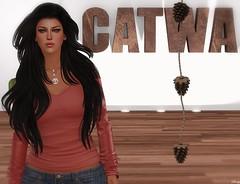 Catwa Reopening
