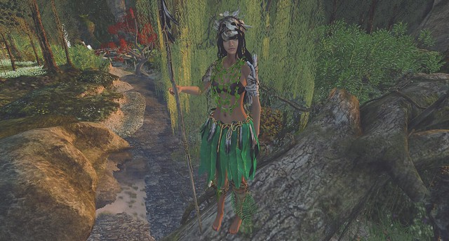 ❥ Welcome to the jungle (Blog post 18)