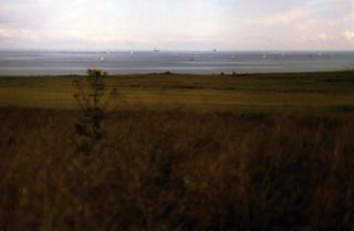 03 Dänischer Wohld 1988