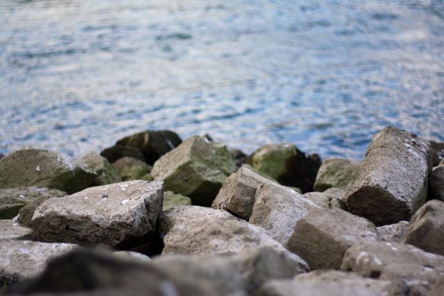 Rocks rock, Bonn