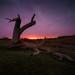 Orange nsw sunset by mhphotography2013