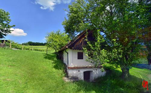 Phot.Austria.Csaterberg.Kellerstöckl.01.061622.9216.jpg