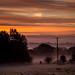 Misty Autumn morning by jayneboo