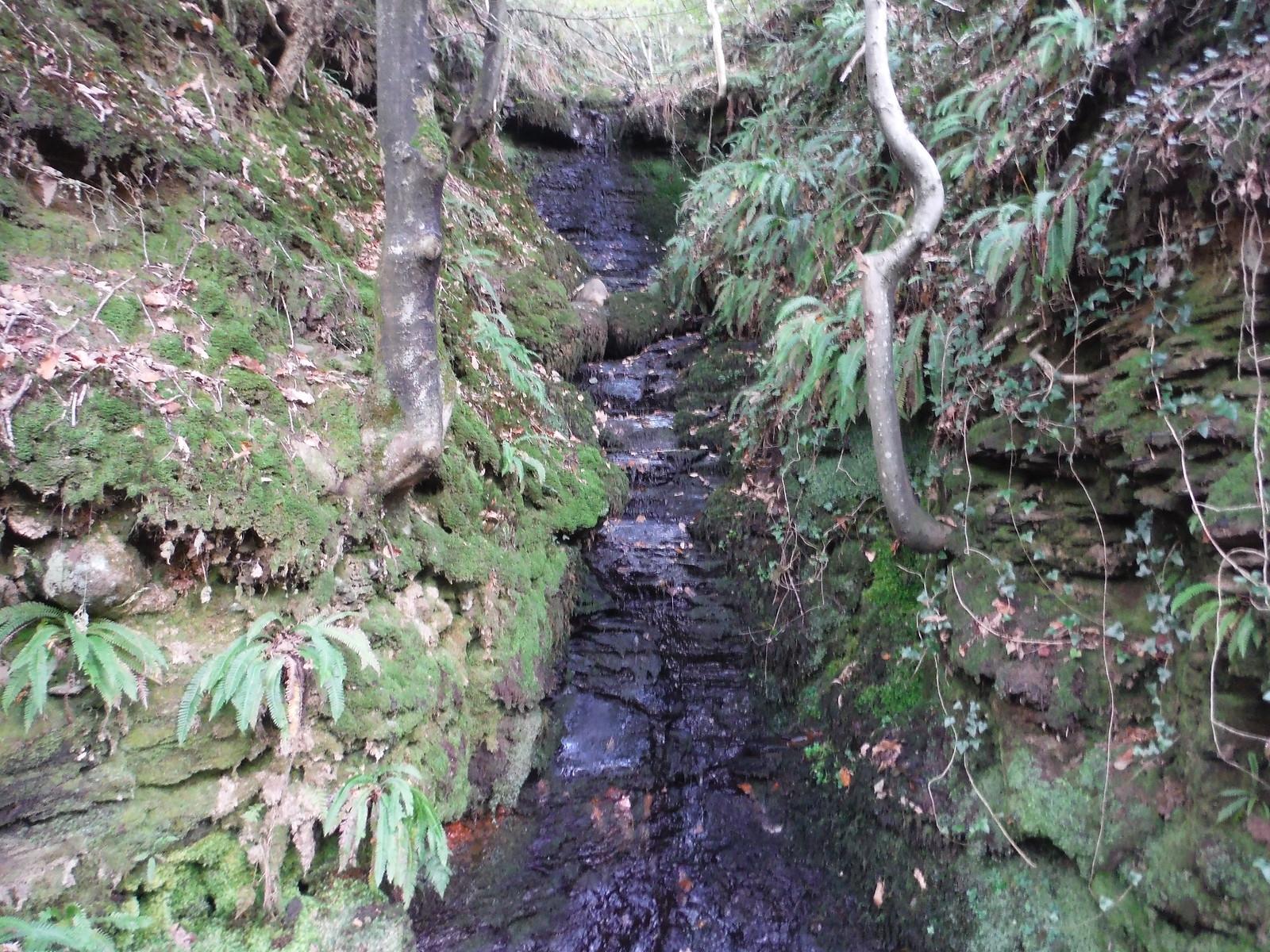 Tributary Stream in the Nant Llech Valley SWC Walk 280 Henrhyd Falls - Sgwd Henrhyd (Craig y Nos Circular)