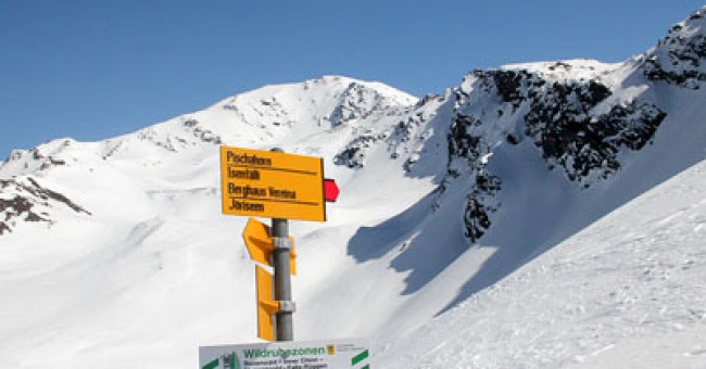 Davos: skialpové příležitosti