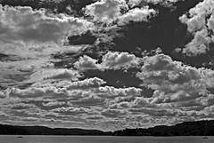 jersey sky