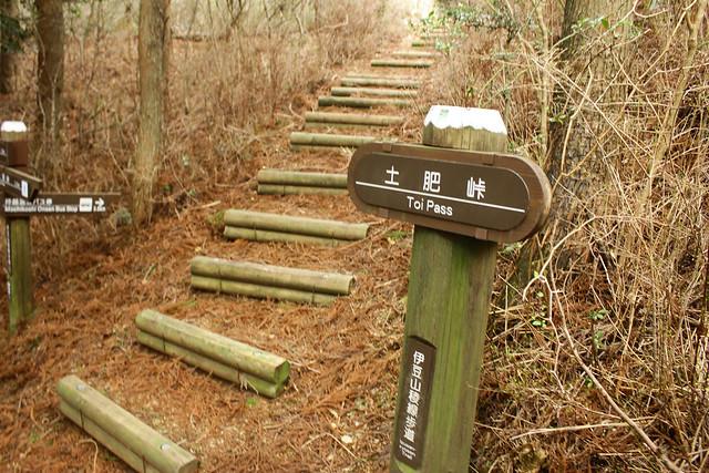 2014-03-31_00586_伊豆稜線トレイル.jpg