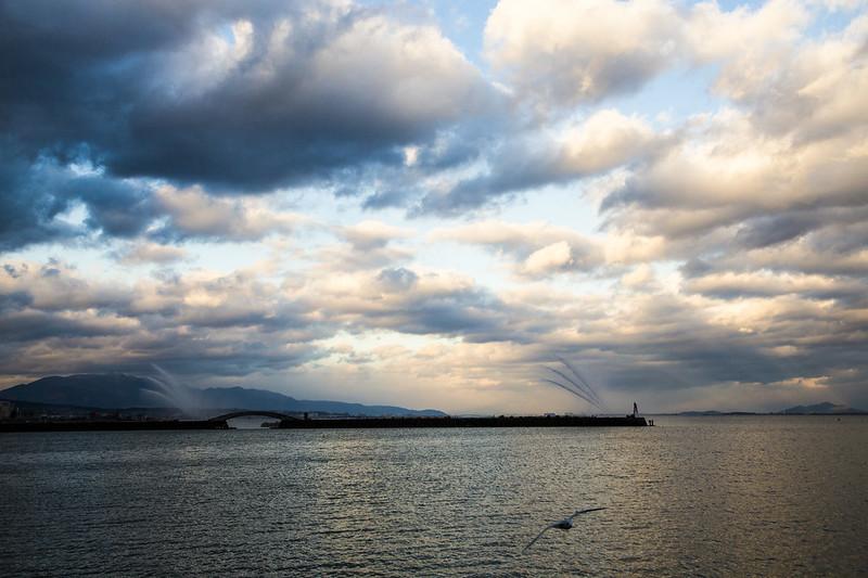 滋賀県・琵琶湖・湖畔ハイキング_44