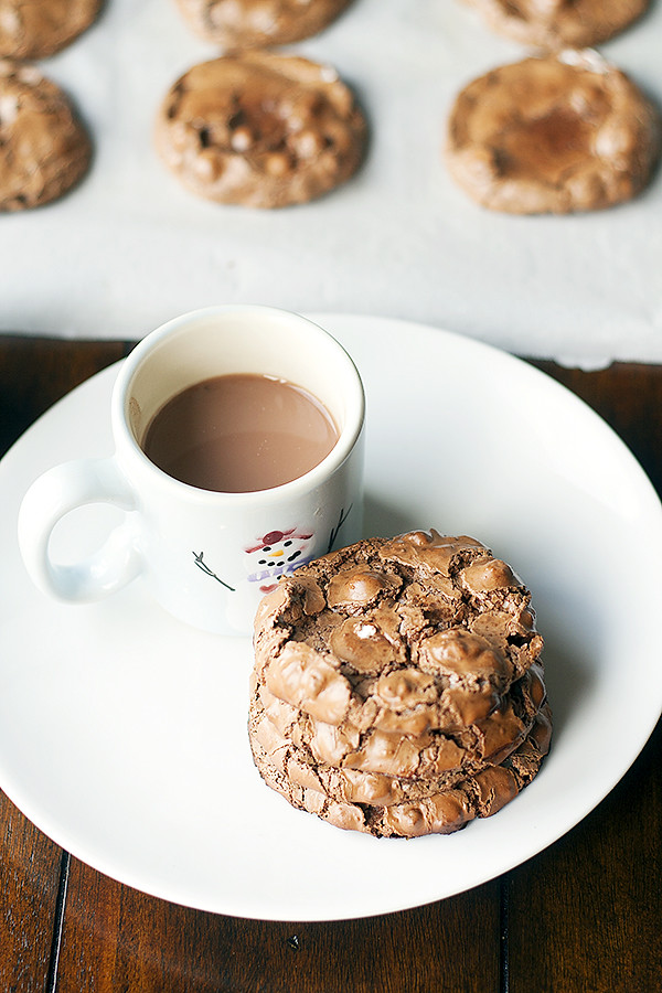 easy holiday cookie recipe   flourless hot cocoa cookies