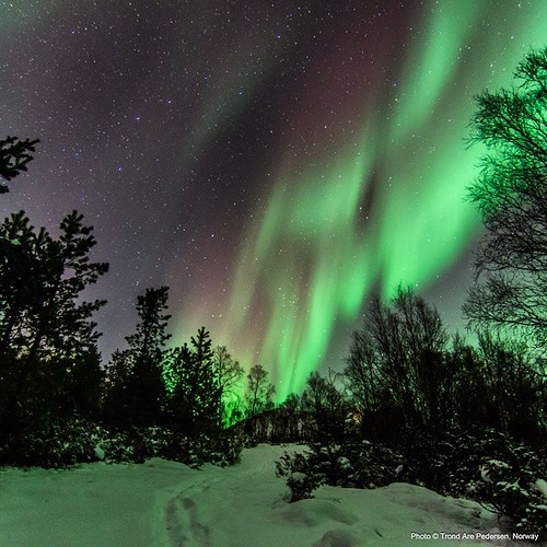Aurora borealis / northern lights. Captured in Birtavarre, Norway, 27. December 2014.