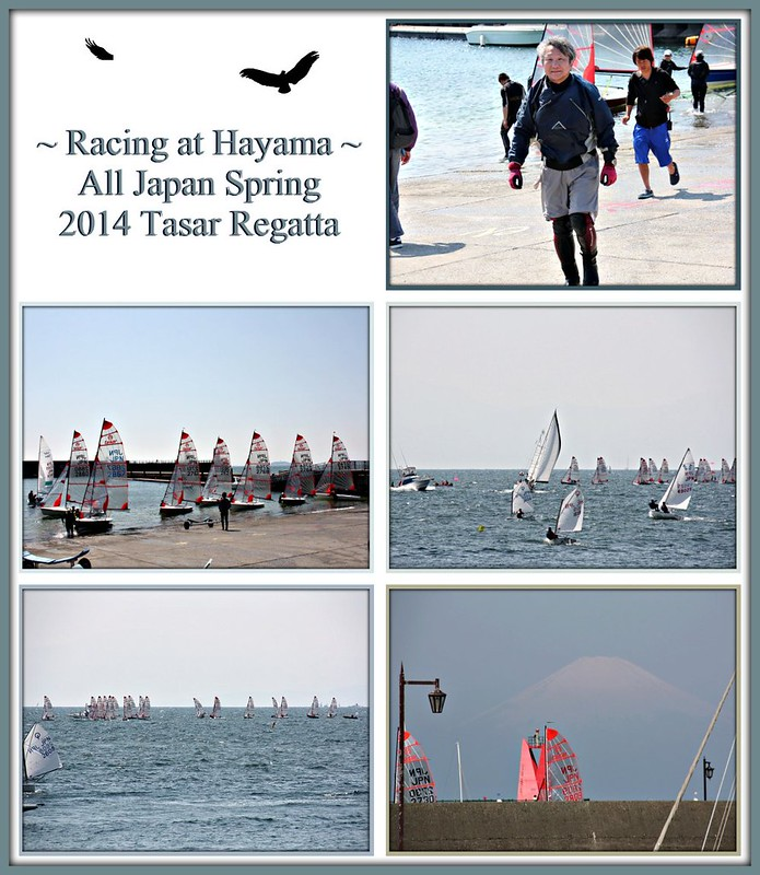 Racing at Hayama in the All Japan Spring 2014 Tasar Regatta