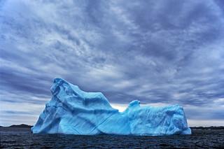 Newfoundland iceberg, 2007