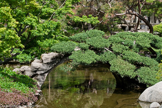The Huntington Chinese & Japanese Gardens