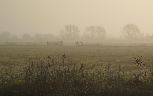 mist somerset levels