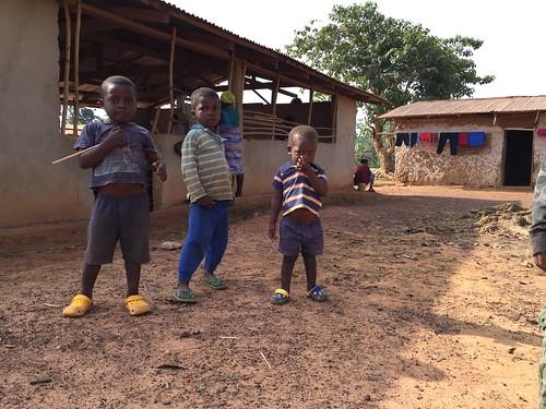 liberia ebola tappita