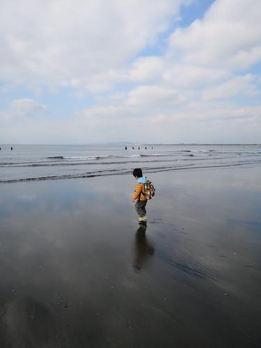 とらちゃん、海へ行く