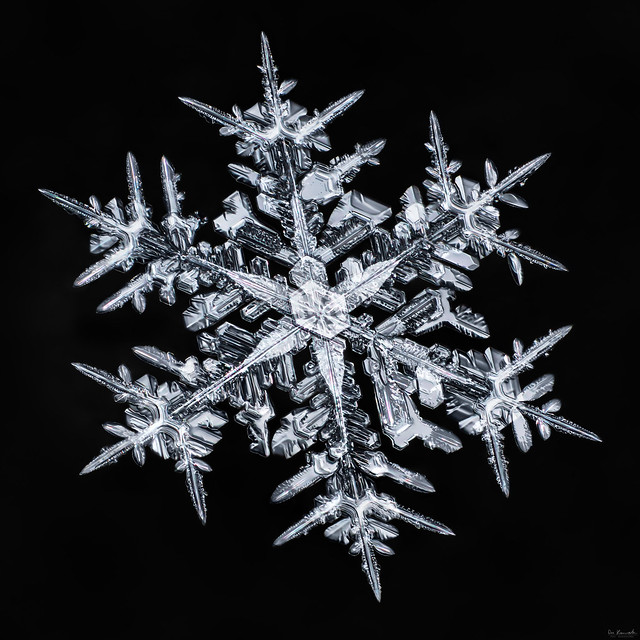 Snowflake-a-day#93, snowflake macro photo by Don Komarechka
