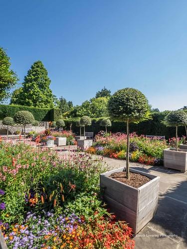 Flowers at Dyffryn Gardens 2016 07 19 #11