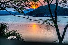 Fire Sunrise