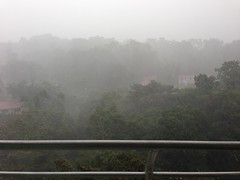 fog(1.0), rain(1.0), drizzle(1.0), haze(1.0), morning(1.0), mist(1.0),