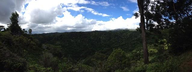 Aiea Loop Trail Pano