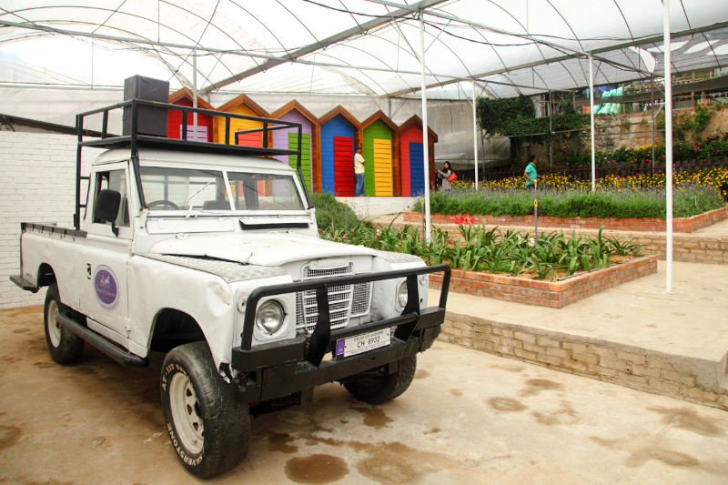 Lavender-House-Truck