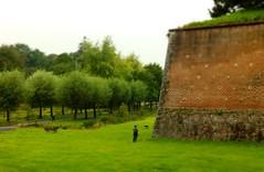 Miniature miniature - Photo of Raucourt-au-Bois