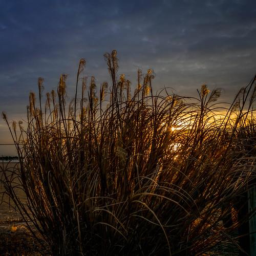 night sunrise lowlight nikon meetup feb nightandlowlight d5300 2015fastapp69d5300