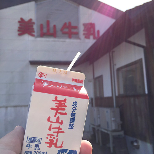 美山ふれあい広場で牛乳を飲む