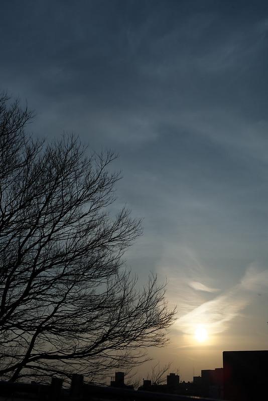 東京路地裏散歩 谷中 夕日 2015年2月21日