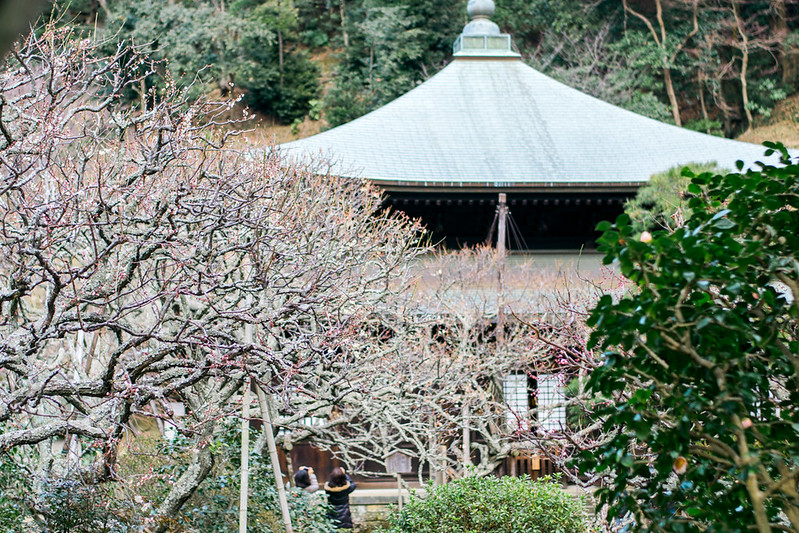 Zuiseji Temple in Kamakura