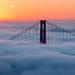 SF Fog by Matt Granz Photography