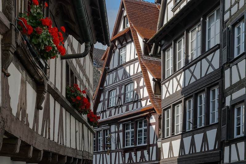 Strasbourg lines