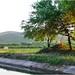 Rumbo a La Media Luna - Rioverde SLP México 140402 183012 4370 por Lucy Nieto
