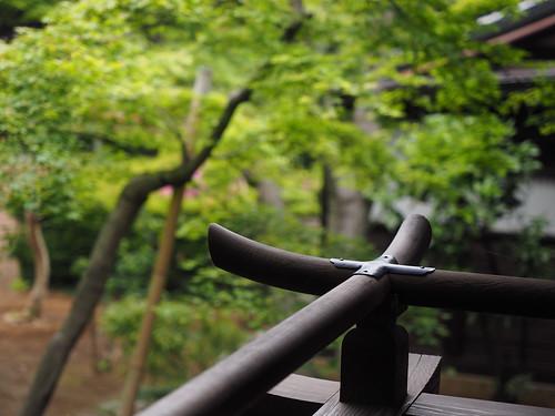 Kawagoe_Garden@Kitain